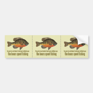 Bream Fishing Bumper Sticker