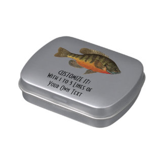 Bream Fishing Jelly Belly Candy Tin