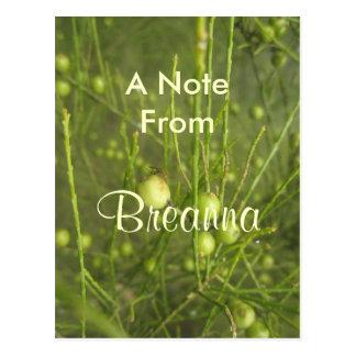 Breanna Postcard