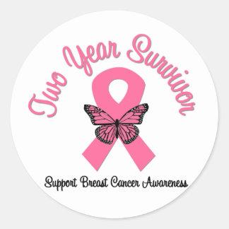 Breast Cancer 2 Year Survivor Sticker