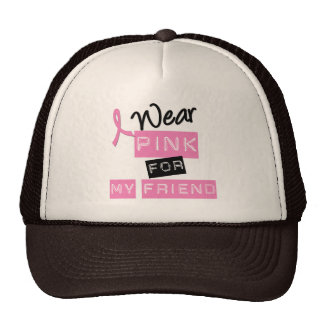 Breast Cancer I Wear Pink For My Friend Mesh Hats