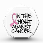 Breast Cancer - In The Fight Award