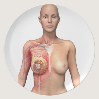 Breast cancer melamine plate