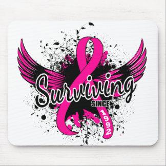 Breast Cancer Surviving Since 1992 Mousepads
