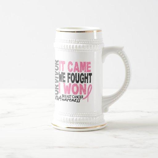 Breast Cancer Survivor It Came We Fought I Won