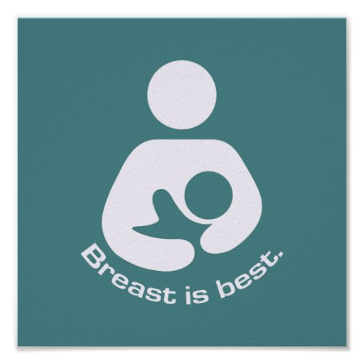 Breast Is Best Icon - Teal Poster