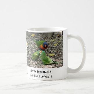 Breasted escamoso australiano y arco iris Lorikeet Taza