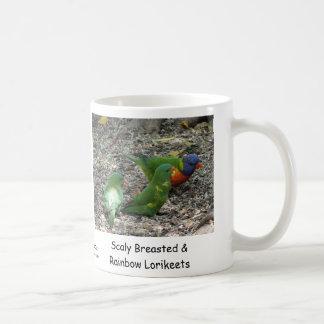 Breasted escamoso australiano y arco iris Lorikeet Tazas De Café