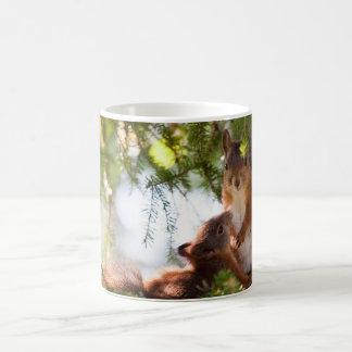 Breastfeeding Squirrel Classic White Coffee Mug