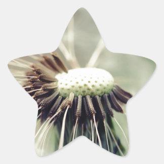 Breath flower 2013 3 star stickers