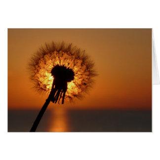 Breath flower/Dandelion Cards