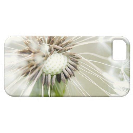 Breath flower iPhone 5 case