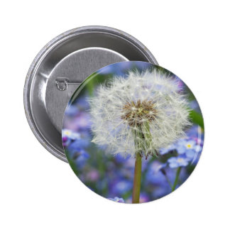 Breath flowers dream in blue forget-me-not blooms pinback button