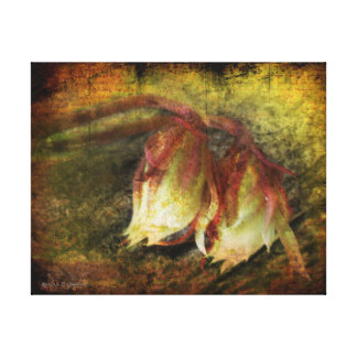 Breath of Life Stretched Canvas Prints