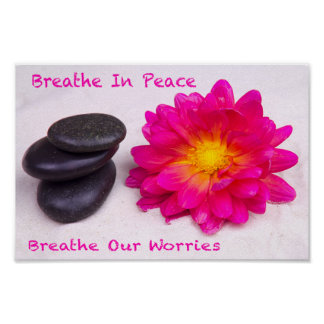 Breathe In Peace Breathe Out Worries Dahlia Zen Poster