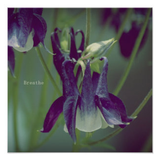 Breathe - Square Poster