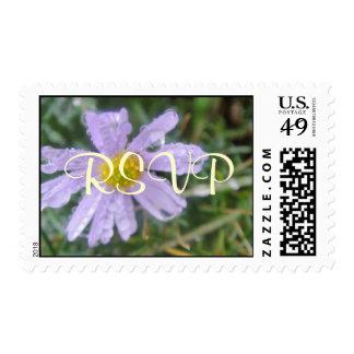 Breathless Postage Stamp