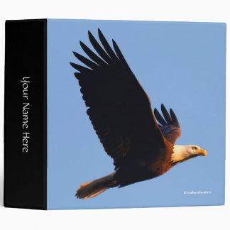 Breathtaking Bald Eagle in Winter Sunset Flight 3 Ring Binder