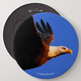 Breathtaking Bald Eagle in Winter Sunset Flight Button