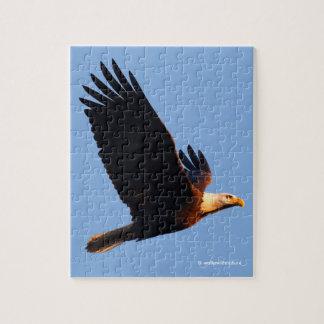 Breathtaking Bald Eagle in Winter Sunset Flight Jigsaw Puzzle