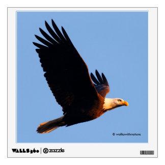 Breathtaking Bald Eagle in Winter Sunset Flight Wall Sticker