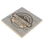 Breckenridge Old Paint Silver Wood Coaster