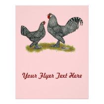 Breda Chickens Cuckoo Flyer