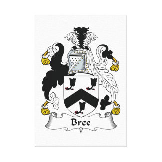 Bree Family Crest Gallery Wrap Canvas
