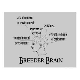 Breeder Brain Postcard
