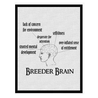 Breeder Brain Post Cards