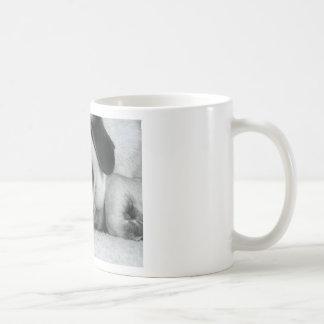 breena pic mugs