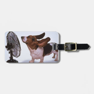 Breeze -Dog and Fan Bag Tag