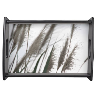 Breeze | Japanese Silvergrass Photography Serving Tray