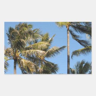 Breezy Palms! Rectangular Sticker
