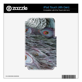 breezy peacock feathers iPod touch 4G skins