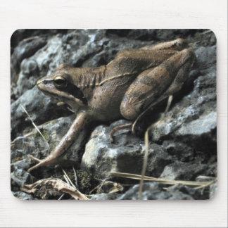 Brekeke Frog Mouse Mats
