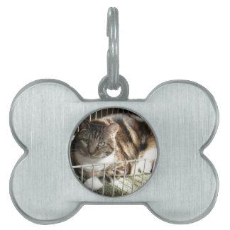 Brendle Pet ID Tag