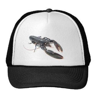 Breton lobster mesh hats