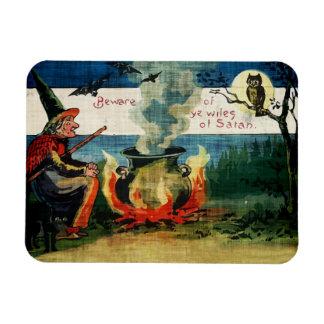 Brew y búho de las brujas de Halloween del vintage Imán De Vinilo
