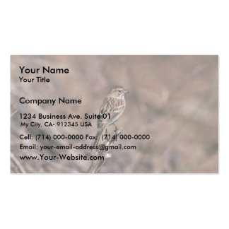 Brewer's sparrow Double-Sided standard business cards (Pack of 100)