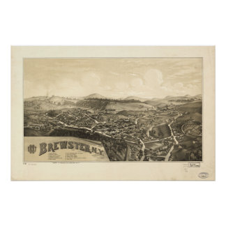Brewster New York 1887 Antique Panoramic Map Poster