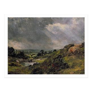 Brezo de Hampstead, charca de la colina de la rama Tarjetas Postales