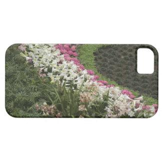 Brezo del rododendro (catawbiense del rododendro) iPhone 5 Case-Mate cobertura