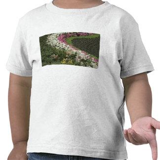 Brezo del rododendro (catawbiense del rododendro) camiseta