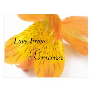 Briana Post Card