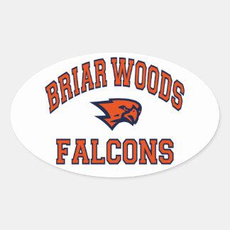 Briar Woods Falcons Oval Sticker