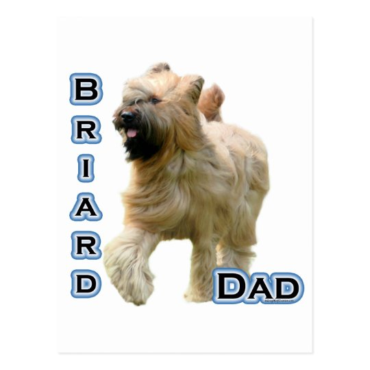 Briard Dad 4 Postcard