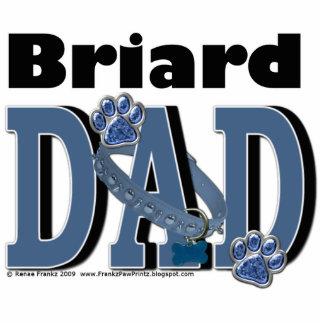 Briard DAD Photo Cut Out