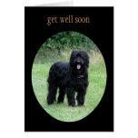 Briard dog get well soon greetings card
