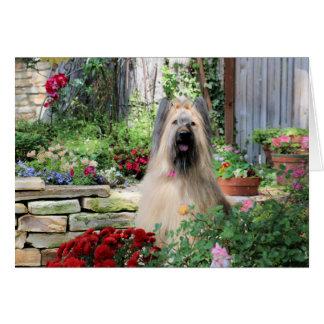 Briard Dog in Flower Garden Greeting Card